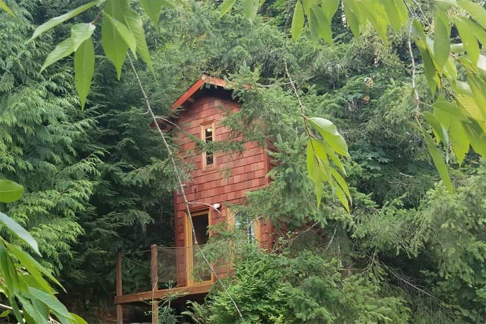 snohomish wa treehouse rental