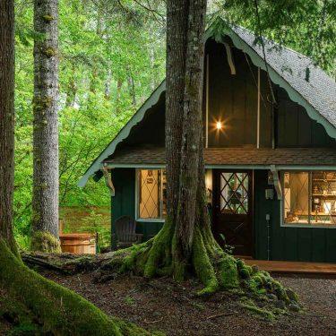 best cabin rentals mount rainier