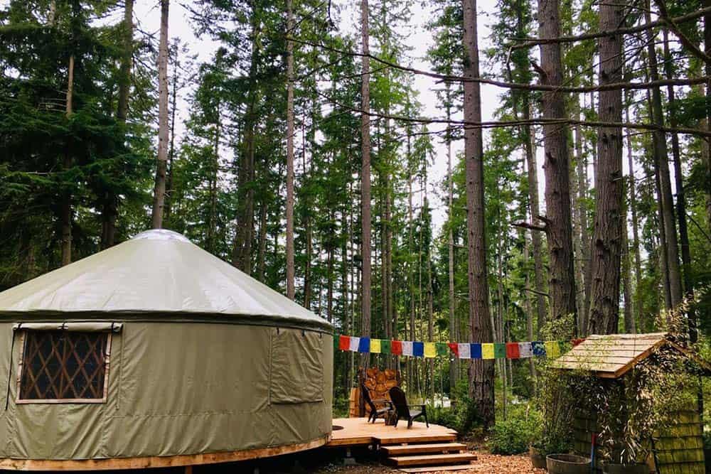 forest yurt glamping washington