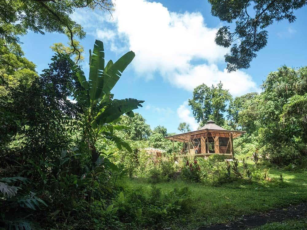 jungle glamping airbnb hawaii