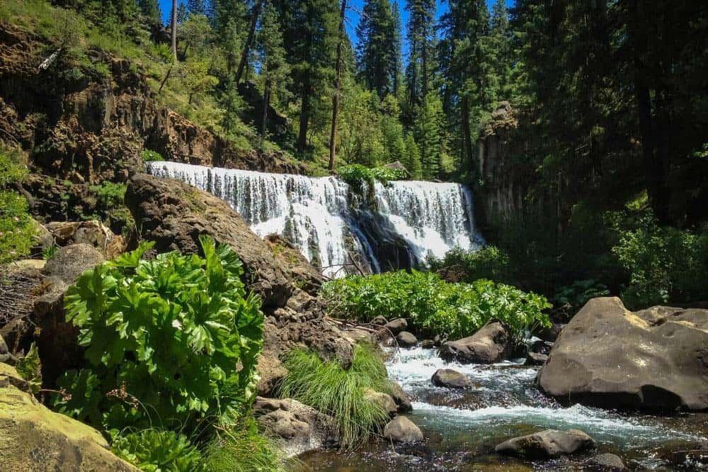 mccloud river falls mt shasta