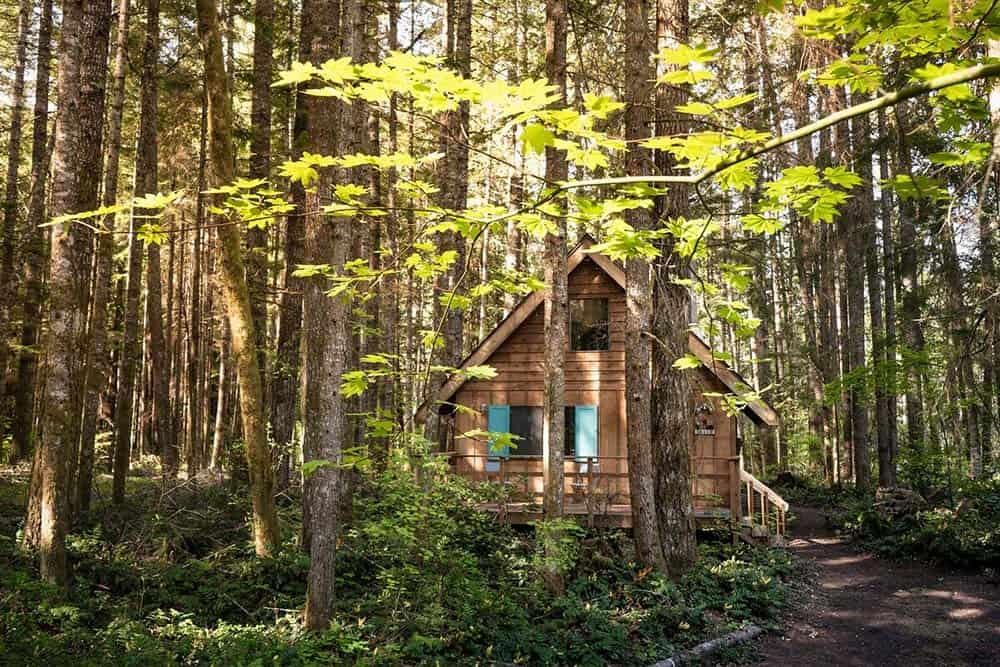 mount rainier cabin rental