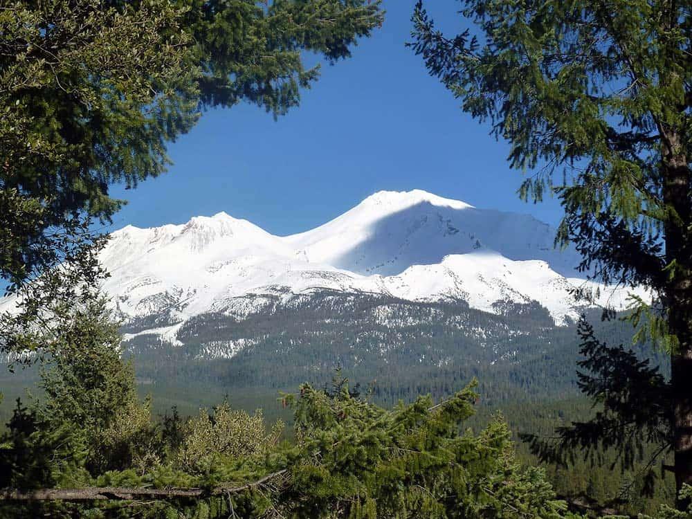spring hill mount shasta