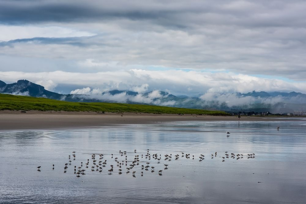 Gearhart Beach Oregon