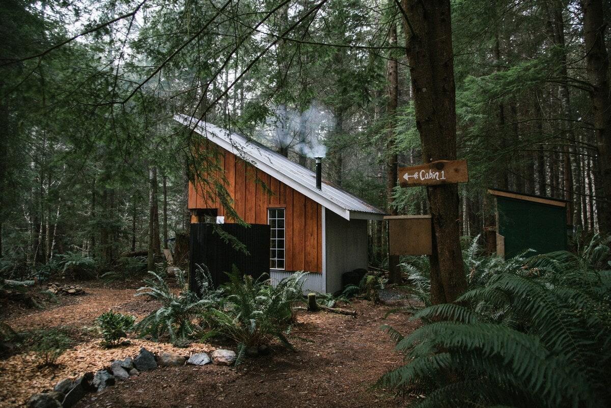 fern gully cabin