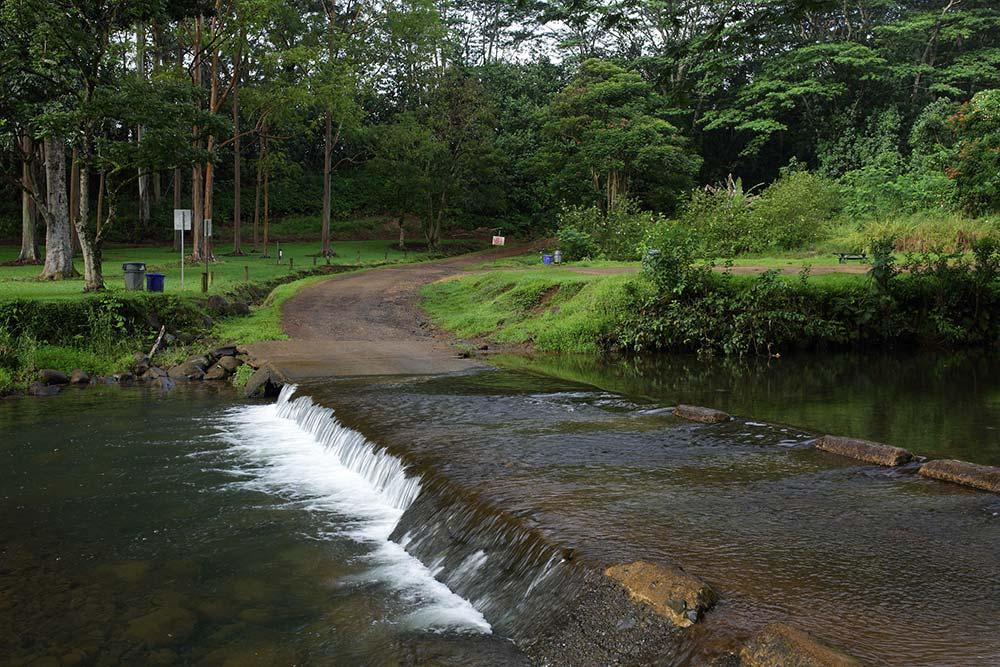 jurassic park gate trail