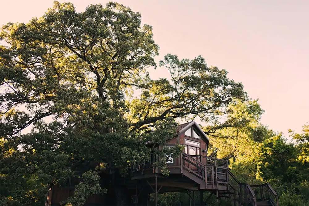 minnesota treehouse glamping