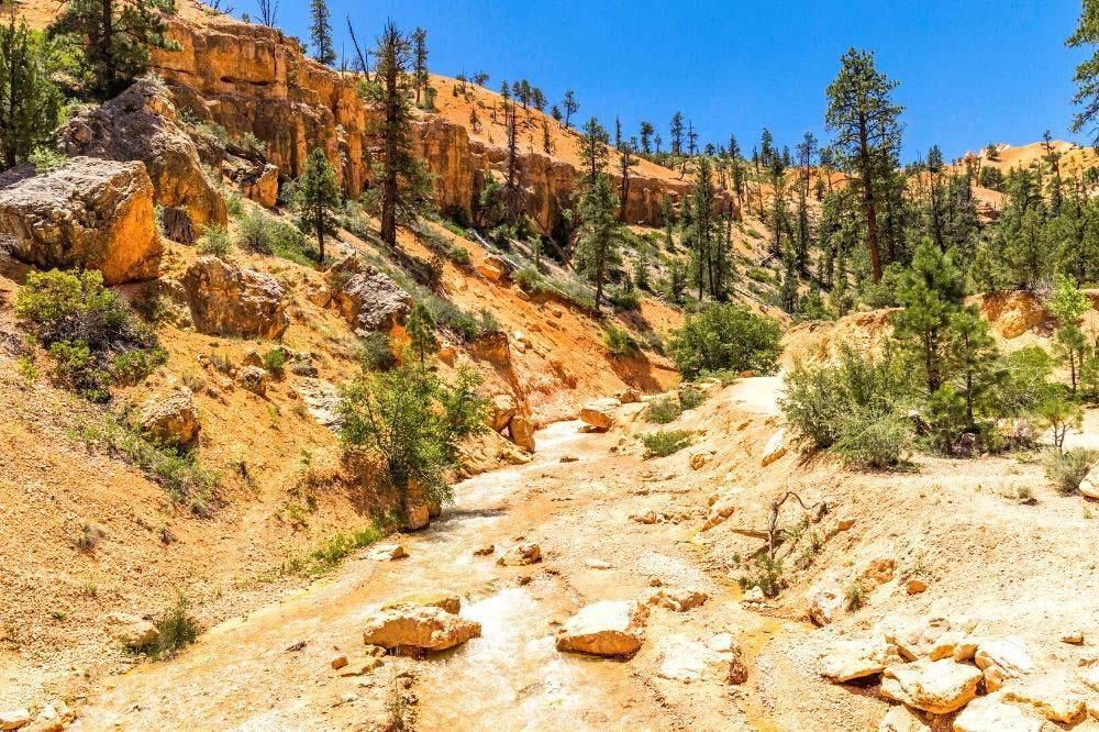 sheep creek bryce canyon