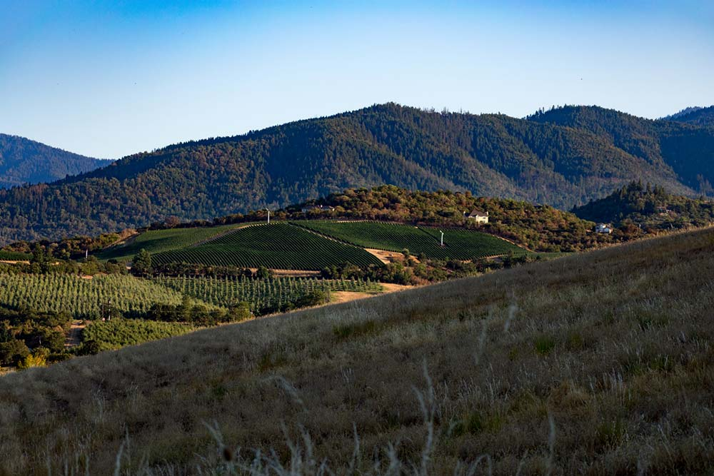 medford wine country