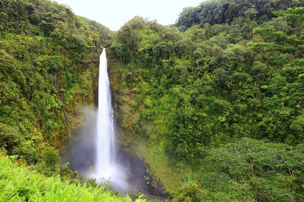Akaka Falls Hike Hawaii