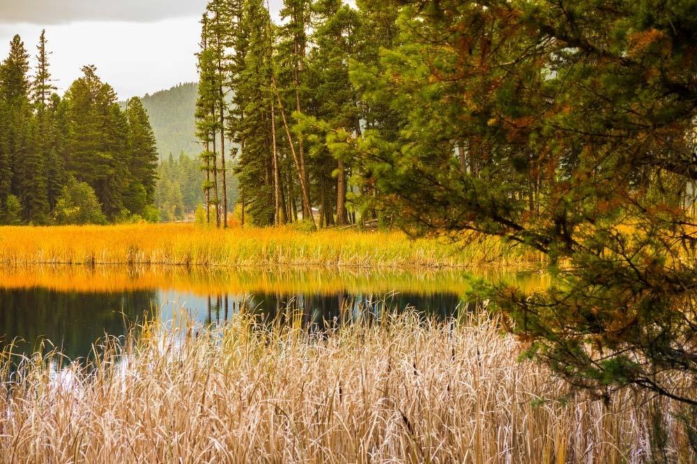 Bonaparte Lake Campground Washington