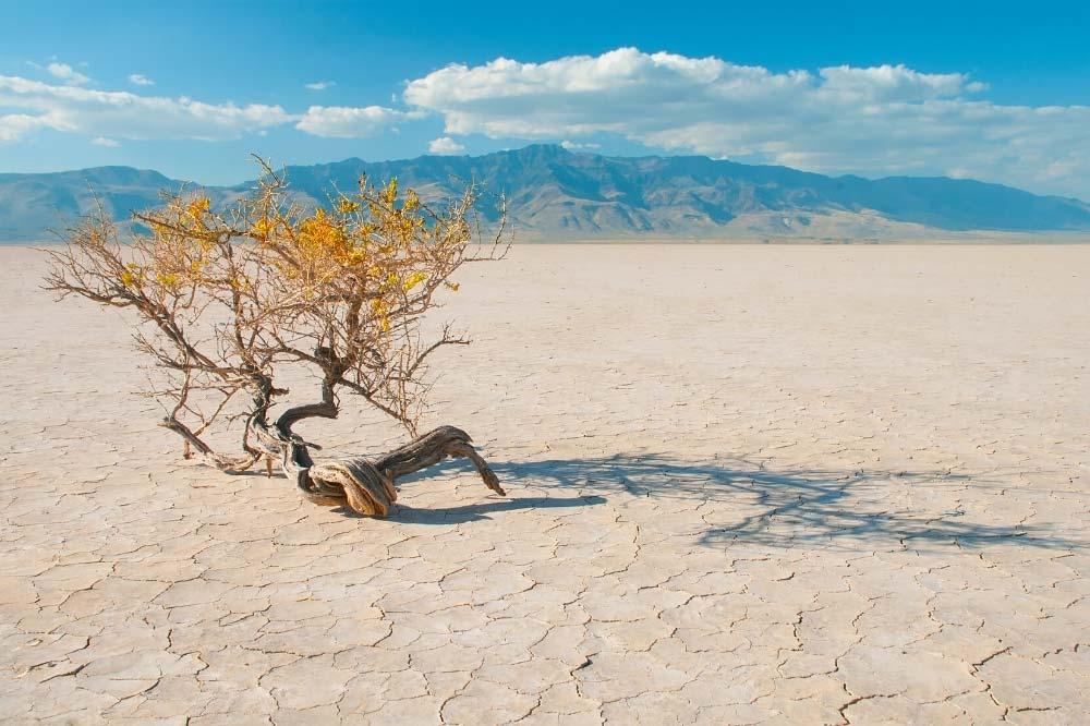 High Desert Discovery Scenic Byway Alvord Desert