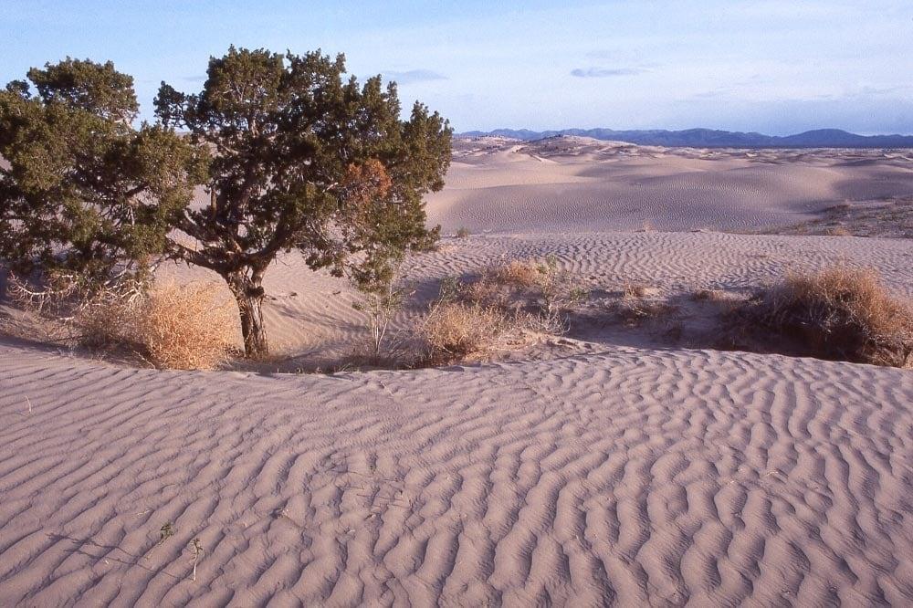 Little Sahara utah