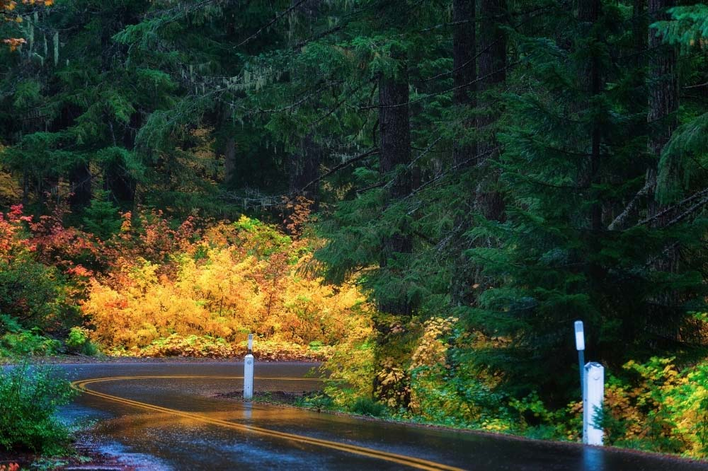 McKenzie Pass-Santiam Pass Scenic Byway