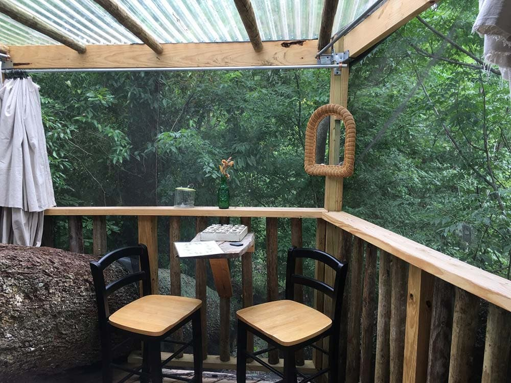 florida treehouse airbnbs