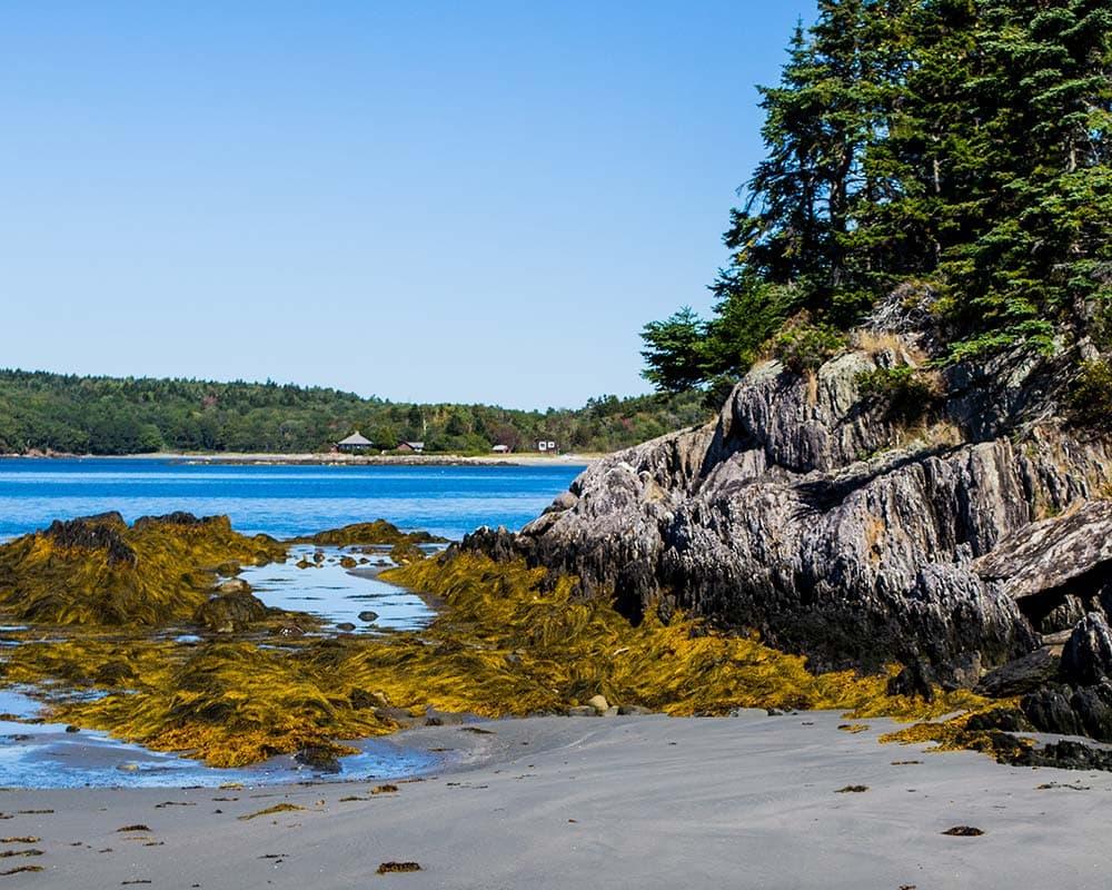 Hermit Island Campground Maine