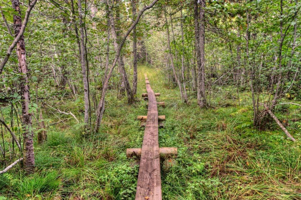 Isle Royale National Park Camping