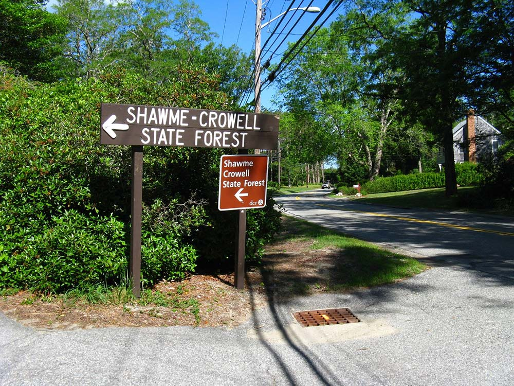 Shawme-Crowmwell State Forest Campground