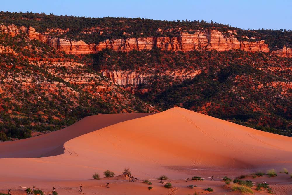 kanab utah coral pink sand dune