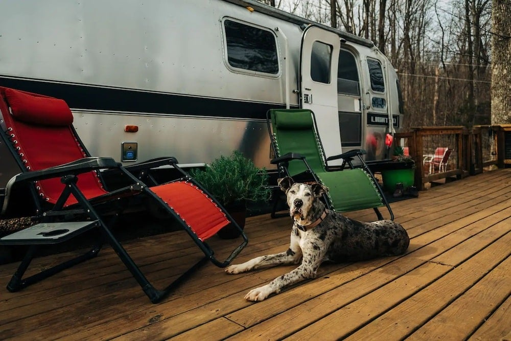 secluded 1986 airstream