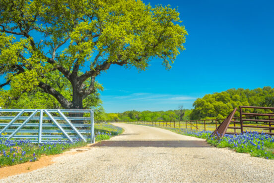 best scenic drives in texas