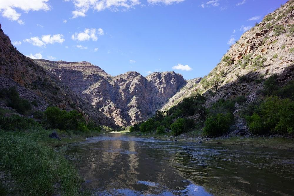 Colorado swimming big Dominguez canyon
