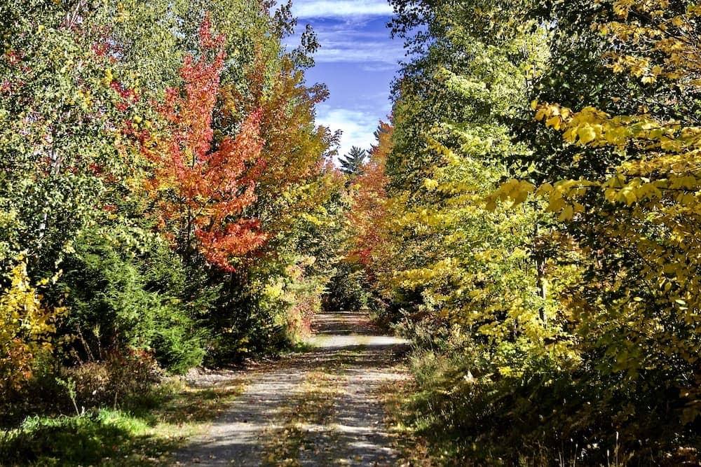million dollar view road Danforth scenic Maine drives