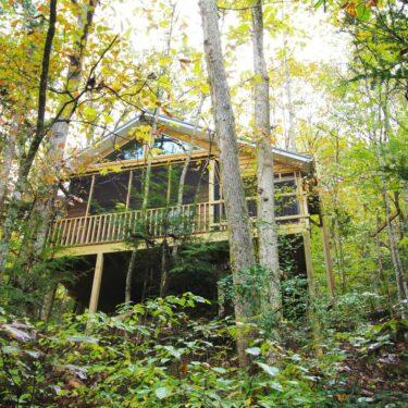 treehouse rentals kentucky