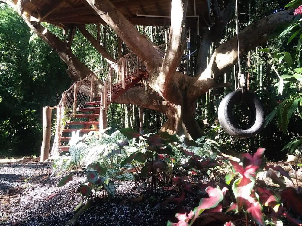 treehouse of life puerto rico