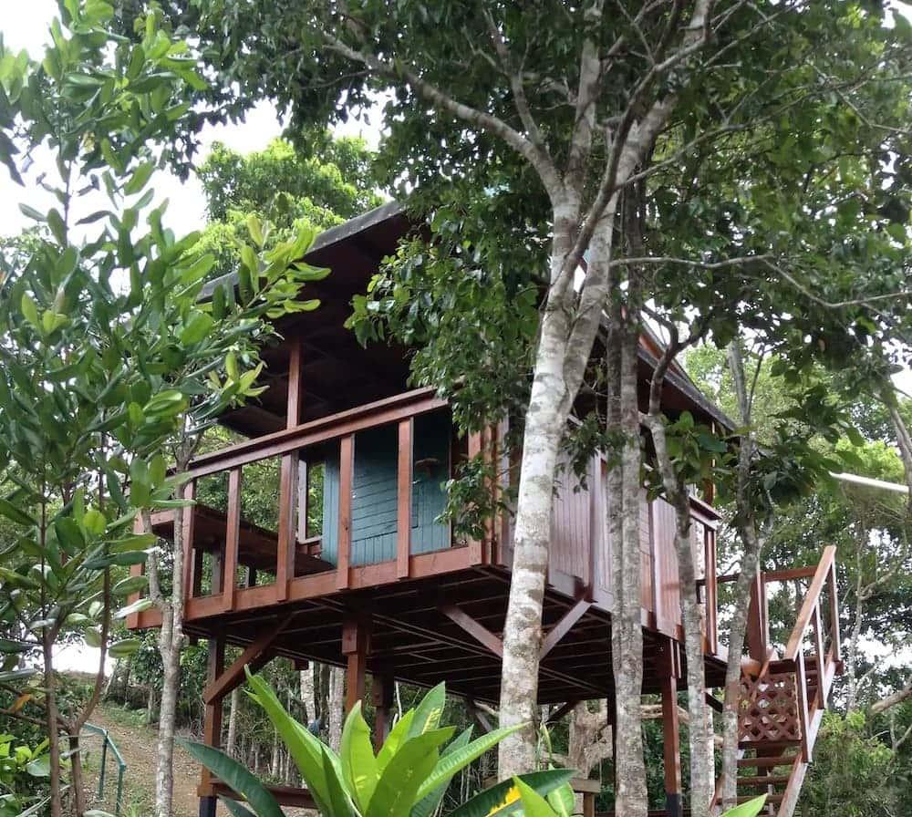 puerto rico treehouse rental
