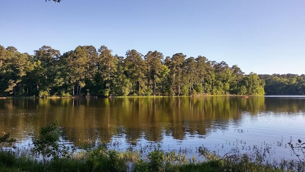 Sam Houston national forest Dallas houston