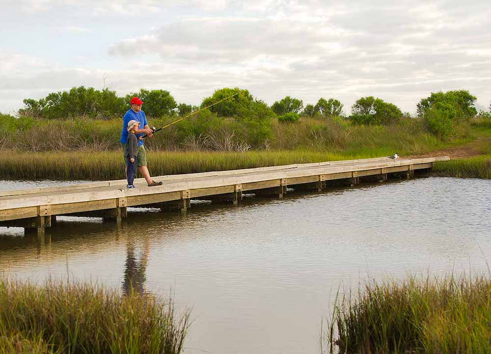 Galveston Island State Park houston camping