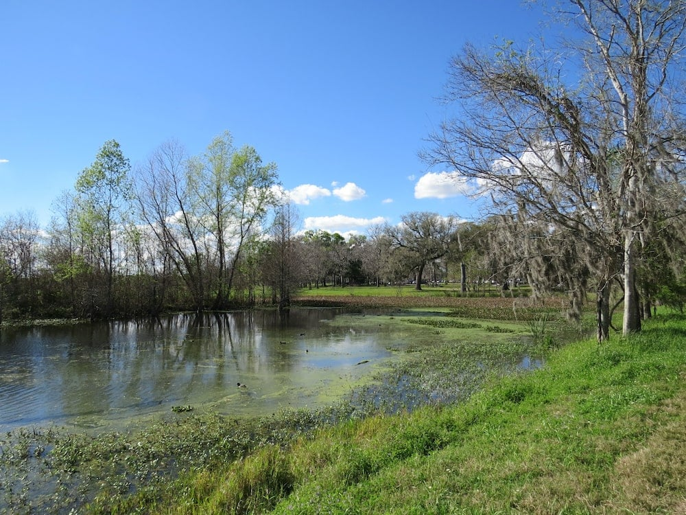 Brazos Bend State Park houston camping