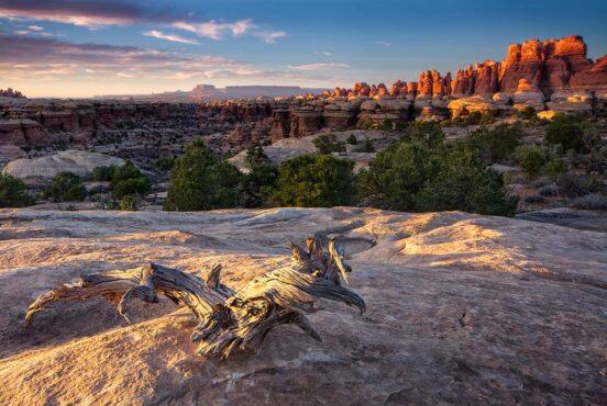 backpacking canyonlands np