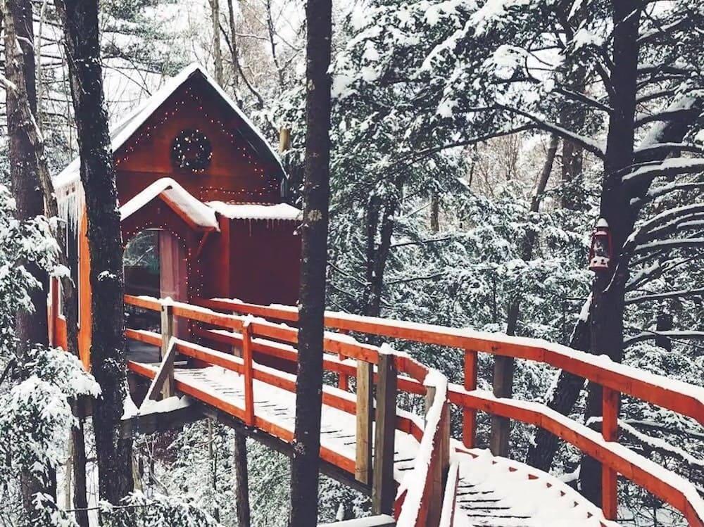 Treetop sanctuary New Hampshire