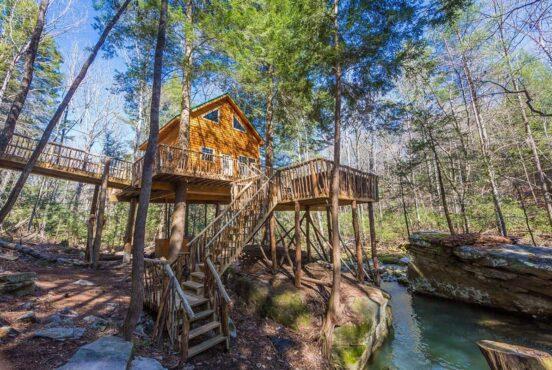 Dreamlike Treehouses in Tennessee