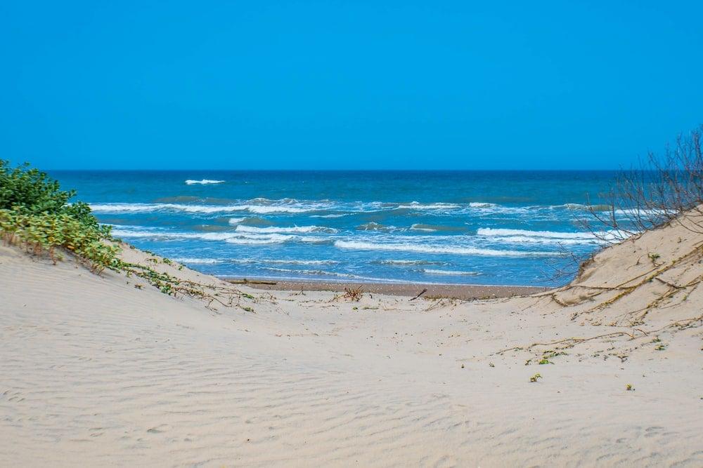 Padre Island National Seashore texas beaches