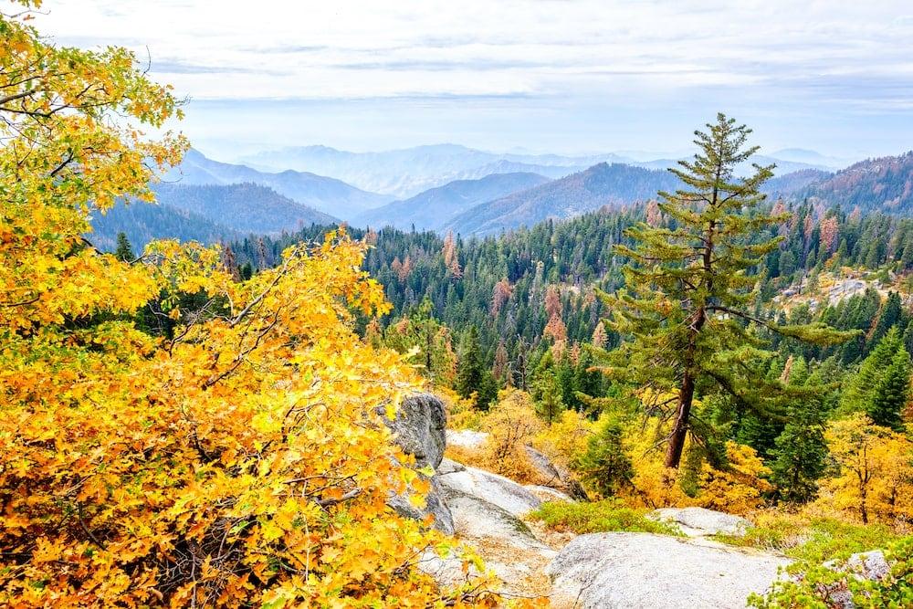 Sierra National Forest fall California