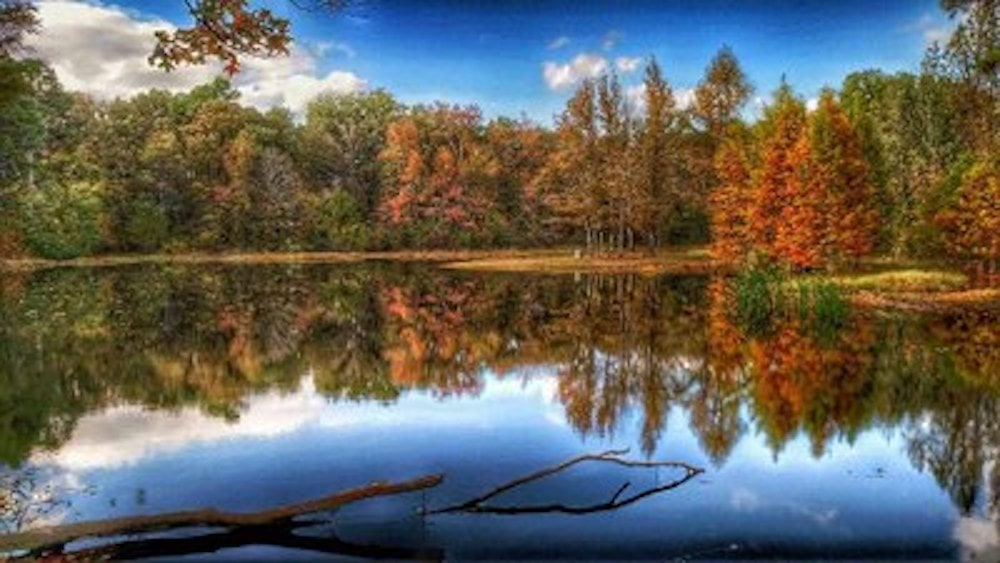 Lake Bob Sandlin State Park texas